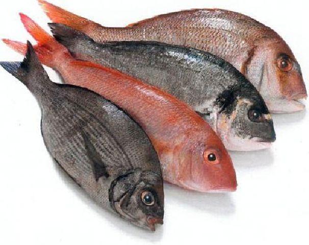 pracooking: Техника разделки продуктов. Рыба. Часть первая (чистка, потрошение, разделка округлой рыбы).