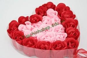 Hoa_Hong_Tang_Ban_Gai_Ngay_valentin