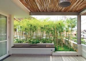 """Trồng nhiều loại cây quen thuộc như tre, trúc tạo cảm giác vườn """"xôm tụ"""" hơn."""