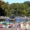 Đến thăm công viên thiên nhiên Central Park