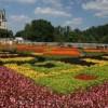 Cùng chiêm ngưỡng lễ hội hoa đầy màu mắc Biltmore ở phía bắc Carolina