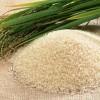 Làm đẹp từ nước vo gạo