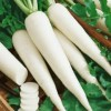 5 mẹo giúp da trắng hồng vào mùa thu