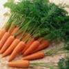 Những thực phẩm giúp phòng và trị bệnh viêm khớp hiệu quả