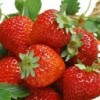Thực phẩm giúp bạn có mái tóc đẹp tự nhiên vào mùa đông