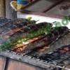 Đặc sản cá lóc nướng trui – Cà Mau