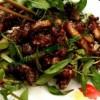 Đặc sản ve sầu dừa – Bình Phước