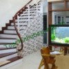 Bể Cá Treo Tường Phong Thủy, Mang Tài Lộc Và Vẻ Đẹp Cho Ngôi Nhà