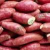 Lý do nên ăn khoai lang mỗi ngày ( Phần 1)