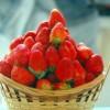 Ăn dâu tây mang nhiều lợi ích cho sức khỏe (Phần Cuối)