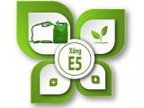 Thực hư về chất lượng xăng E5