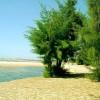 Bãi biển Hồ Cốc và những ngày hè nóng bỏng