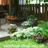 Những nguyên tắc cần biết trong việc thiết kế sân vườn