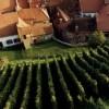 Tham quan Macon – vùng đất của rượu vang